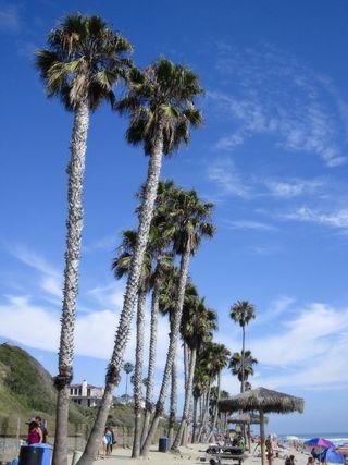 1592 san clemente beach