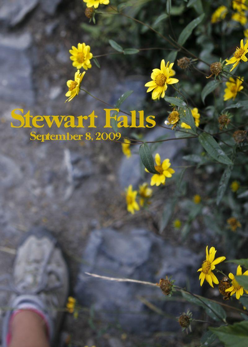 2009 08 16 stewart falls 5x7