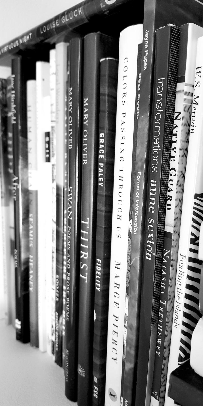 Poetry books amy sorensen