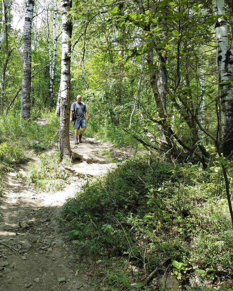 Squawk peak trail no3