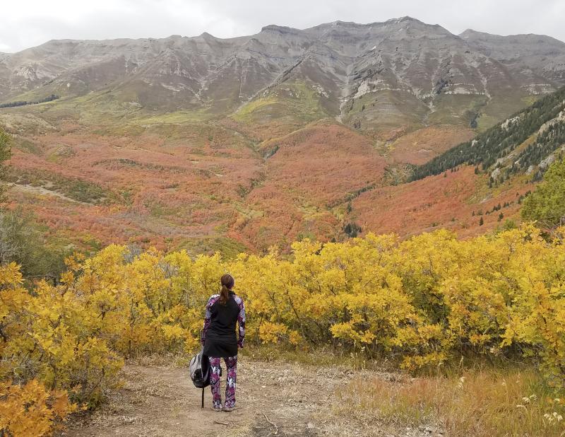 2017 hikes brush mountain