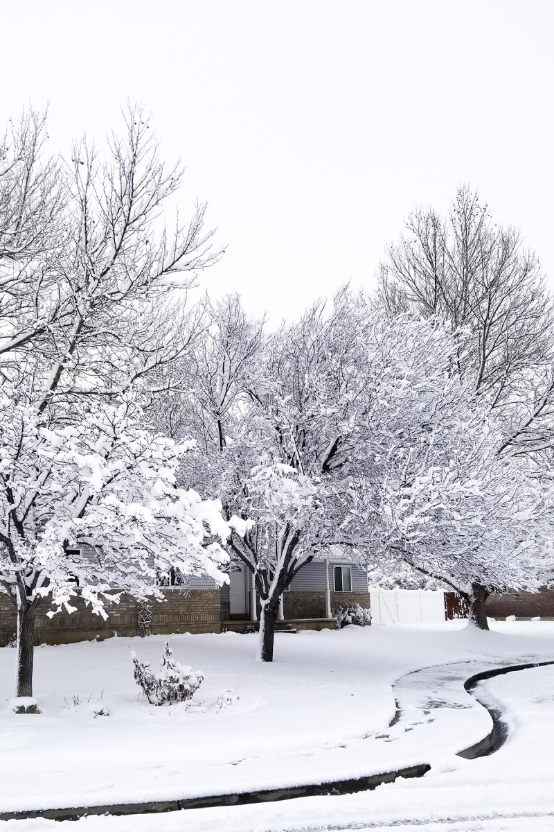 Snowy utah