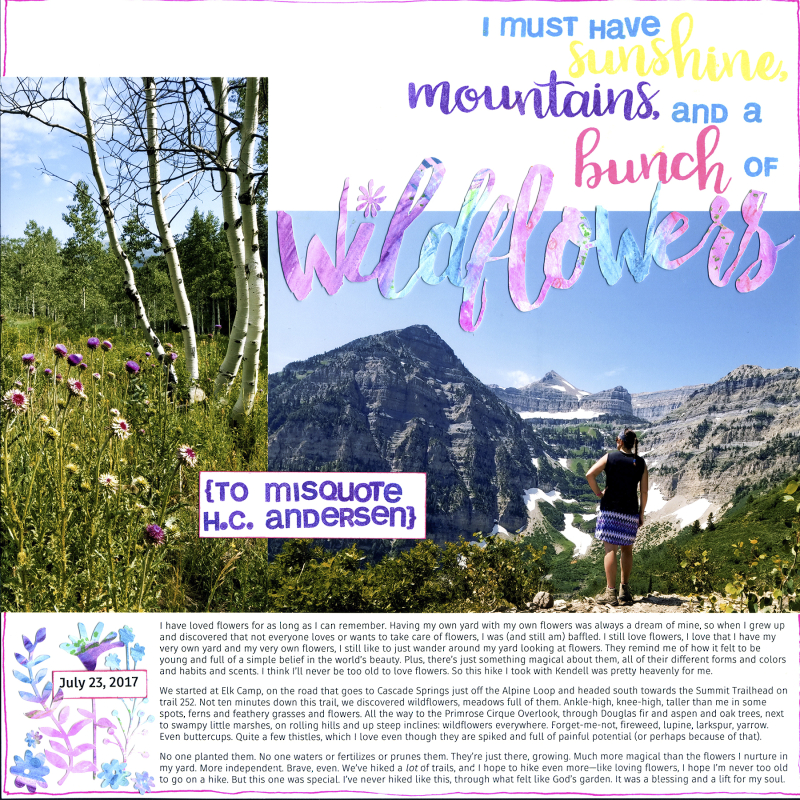 2017 07 23 Amy Sunshine mountains wildflowers