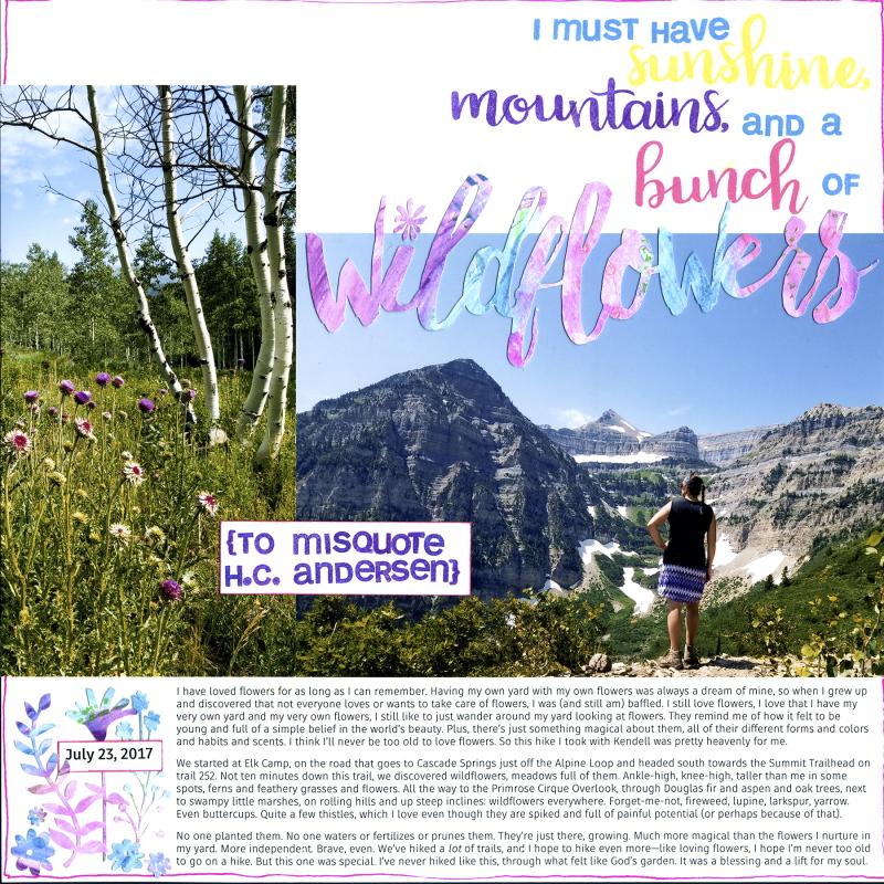 2017 07 23 Amy Sunshine mountains wildflowers