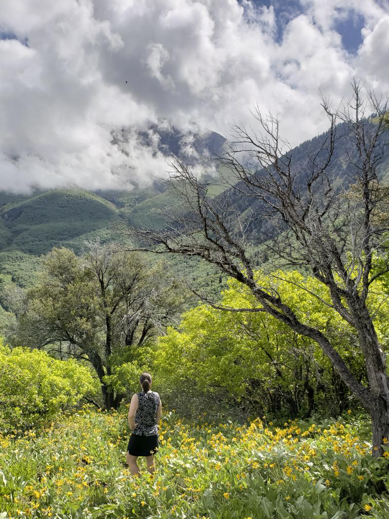 05 spring hiking