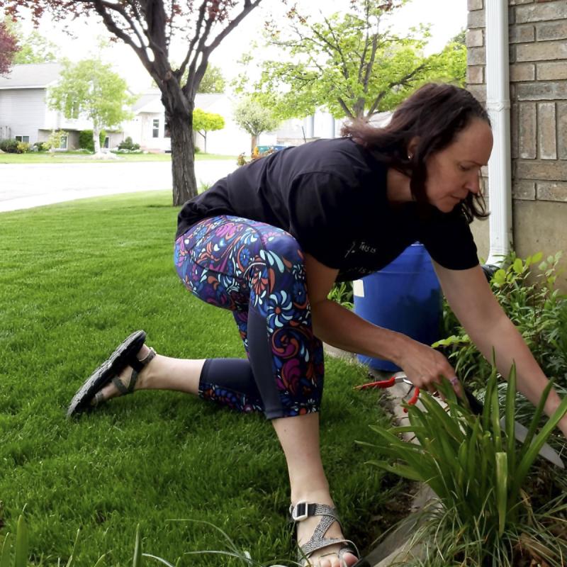 Witl 2019 gardening