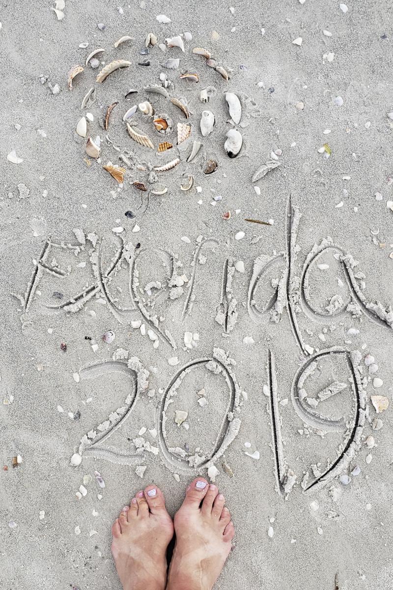 Florida 2019 reentry