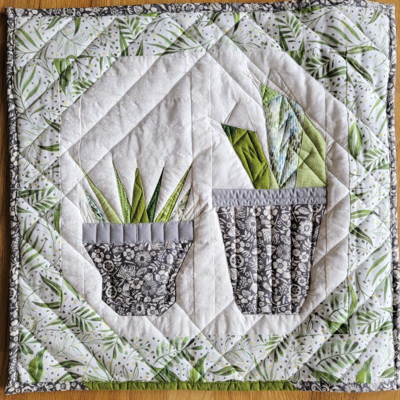 Succulents hotpad