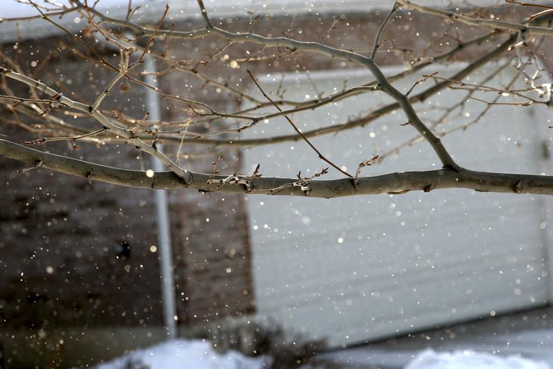 Sunny_snow_edit_resize